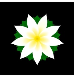 Jasmine Flower Icon on Black Background vector