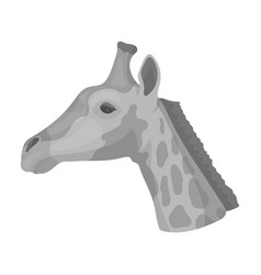 giraffe icon in monochrome style isolated on white vector image