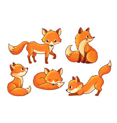 set of cute cartoon foxes in cartoon style vector image