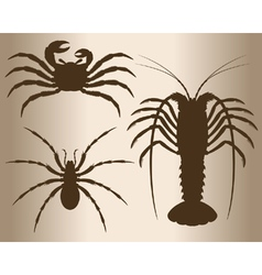 Arthropods vector image