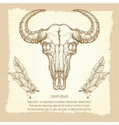 Buffalo skull on vintage background vector