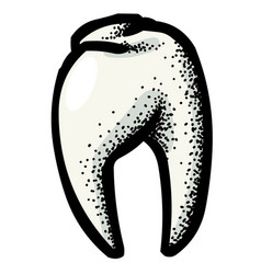 Cartoon image of tooth icon dentistry symbol vector