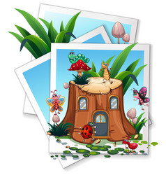 different types of bugs in garden vector image