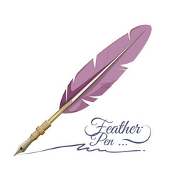 Feather pen writing implement made from feathers vector