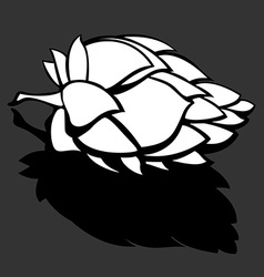 Hop Flower Beer ingredient Black and White vector image