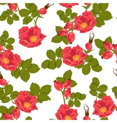 Seamless floral background with wild rose vector