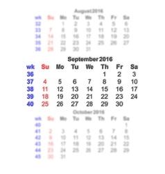 September 2016 Calendar week starts on Sunday vector image
