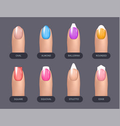 Set of simple realistic colorful manicured nails vector