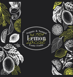 vintage citrus background lemon tree design vector image
