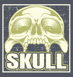 vintage grunge style skull hand drawing vector image