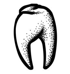 Cartoon image of tooth icon dentistry symbol vector