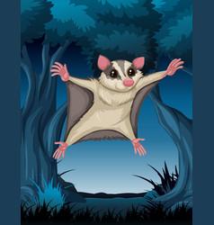 Flying possum in woods vector