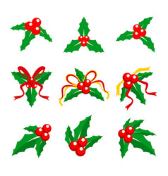 Holly berry red ribbon vector