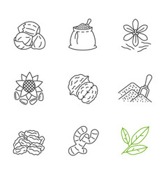 Spices linear icons set vector