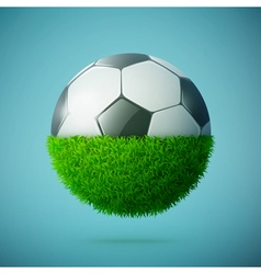 Grass with soccer ball vector