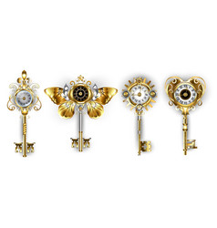 antique keys with dials vector image