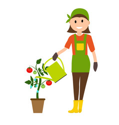 Farmer gardener woman with watering can and tomato vector