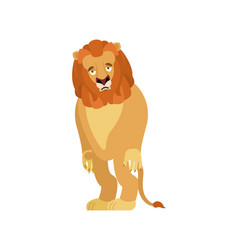 lion sad wild animal sorrowful beast dull vector image