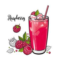 Raspberry summer cool drink with fresh ripe fruits vector