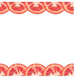 Seamless decorative border of juicy tomato slice vector