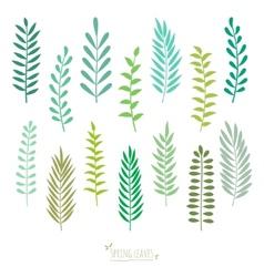 set spring green leaves vector image