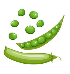 bright collection of colorful peas fresh vector image