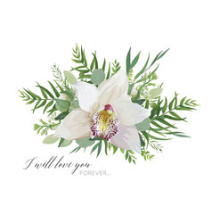 floral greeting card with elegant orchid flower vector image