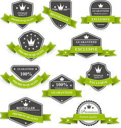 Heraldic medals and emblems with ribbons vector image vector image