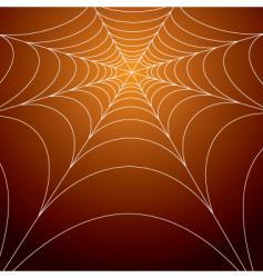 spooky spiders web vector image