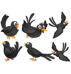 Black birds vector image vector image