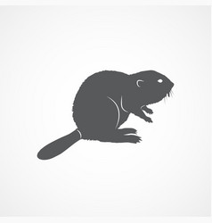 beaver flat icon vector image