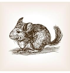 Chinchilla dog sketch vector