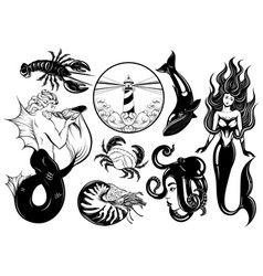 collection hand drawn realistic marine vector image