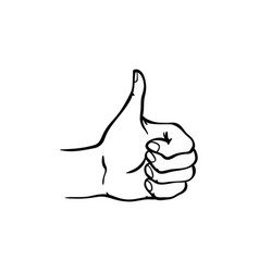human hand showing thumbs up gesture in sketch vector image