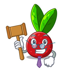 Judge fruit yangmei isolated on the mascot vector