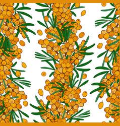 seamless sea buckthorn pattern endless wallpaper vector image