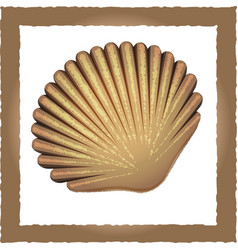 seashell brown vector image