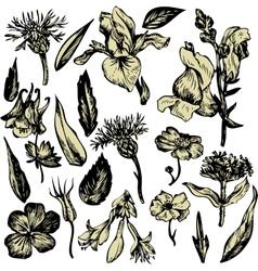 Vintage floral set vector