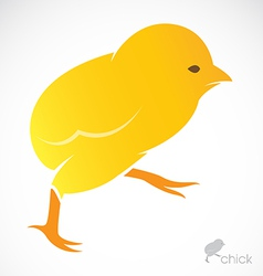 image of an chick vector image
