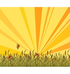 A sunset scenery at the top of the hill vector image