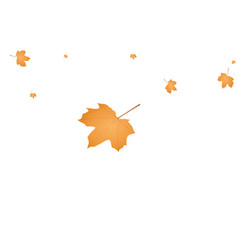 autumn leafs background vector image