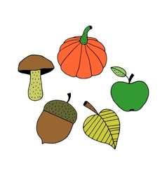 Cartoon Colorful Autumn Objects vector image