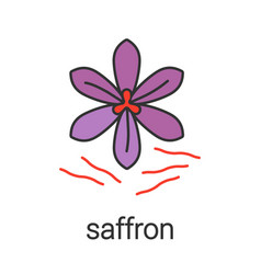 Saffron color icon vector