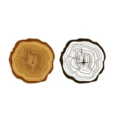 Cut tree icons tree rings vector image