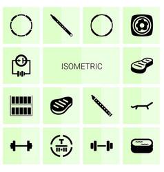 14 isometric icons vector