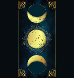 antique style hand drawn moon phases tapestry vector image