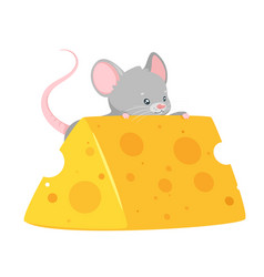 Bamouse eating cheese flat vector