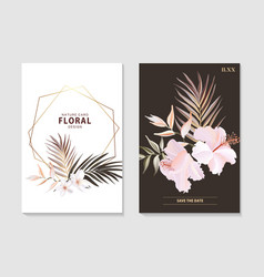 botanical floral set with wild hibiscus flower vector image