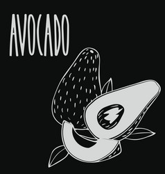 Chalkboard ripe avocado fruit vector