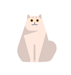 cute short haired british chinchilla cat breed vector image